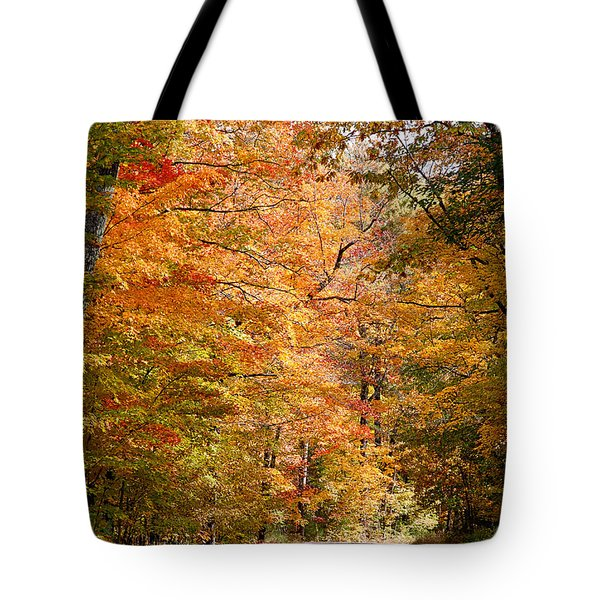 Tote Bag featuring the photograph Autumn Colors - Colorful Fall Leaves Wisconsin IIi by David Perry Lawrence