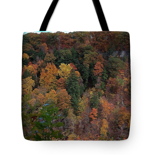 Tote Bag featuring the photograph Autumn Colors In Taughannock State Park Ithaca New York by Paul Ge