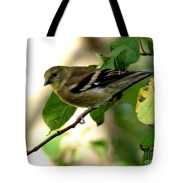 Autumn Colors Tote Bag by Marilyn Smith