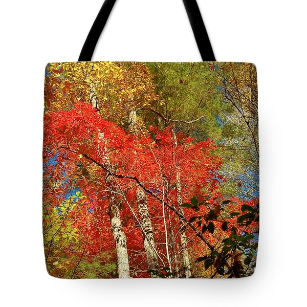 Autumn Colors Tote Bag by Patrick Shupert