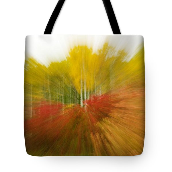 Autumn Colors Tote Bag by Vivian Christopher