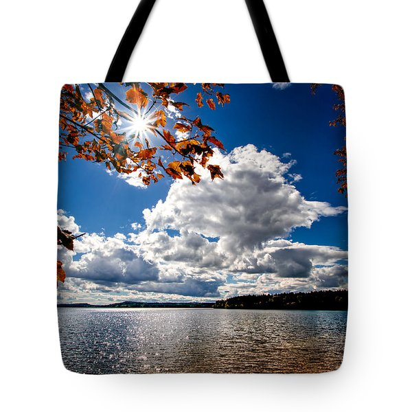 Tote Bag featuring the photograph Autumn  Confidential  by Bob Orsillo