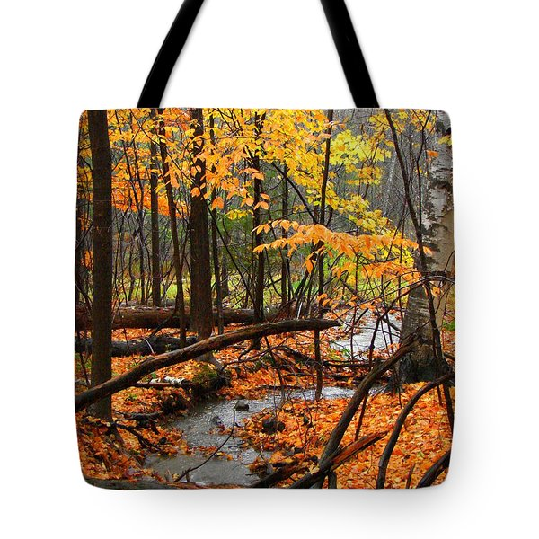 Tote Bag featuring the photograph Autumn Creek In The Rain by Rodney Lee Williams