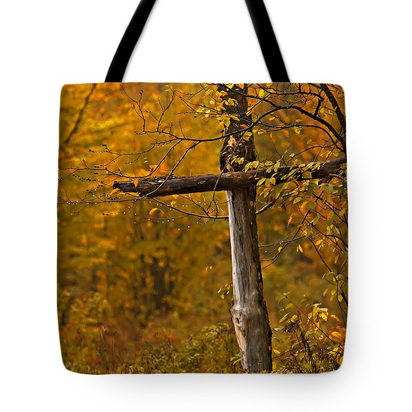 Autumn Cross Tote Bag