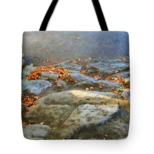 Autumn Crunch  Tote Bag