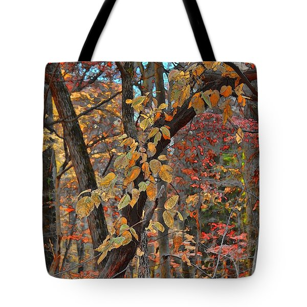 Autumn Day Tote Bag by Jeff Breiman
