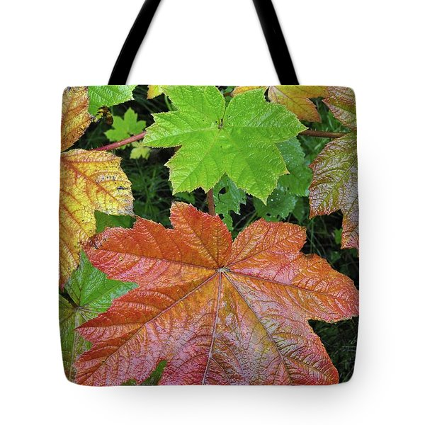 Autumn Devil's Club Tote Bag