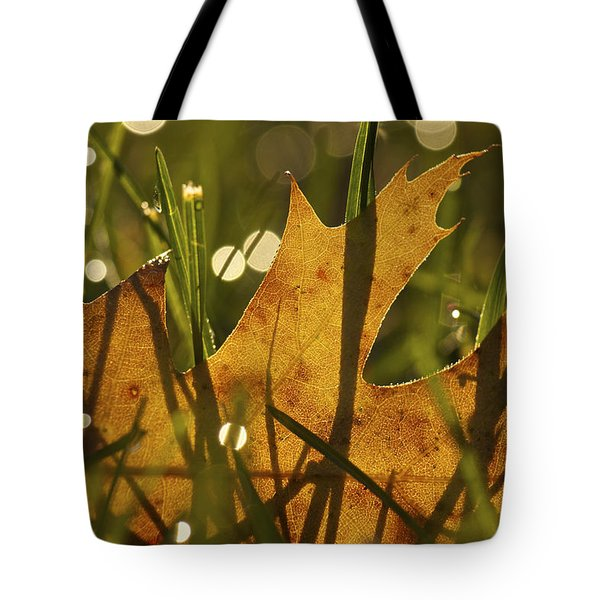 Autumn Dew Tote Bag