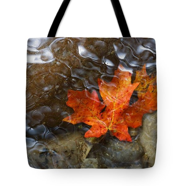 Autumn Down Under Tote Bag