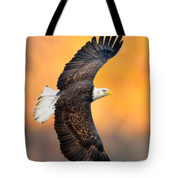 Autumn Eagle Tote Bag
