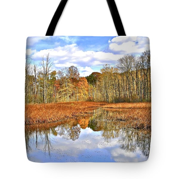 Autumn Fades Tote Bag by Frozen in Time Fine Art Photography