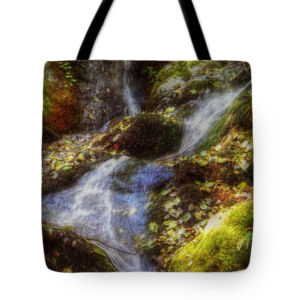 Autumn Falls Tote Bag by Melanie Lankford Photography