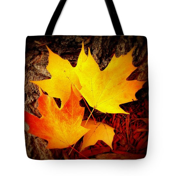 Autumn Fire Tote Bag