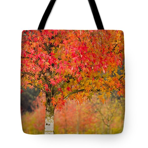 Autumn Fire Tote Bag by Sonya Lang