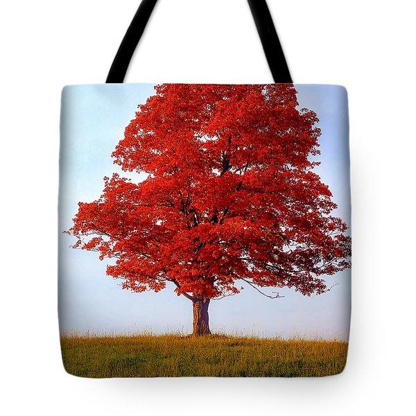 Autumn Flame Tote Bag by Steve Harrington