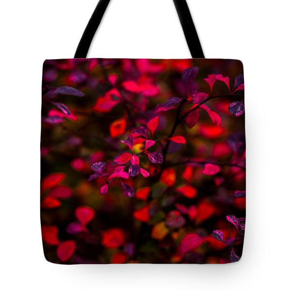 Autumn Flames 2 - Square Tote Bag by Alexander Senin