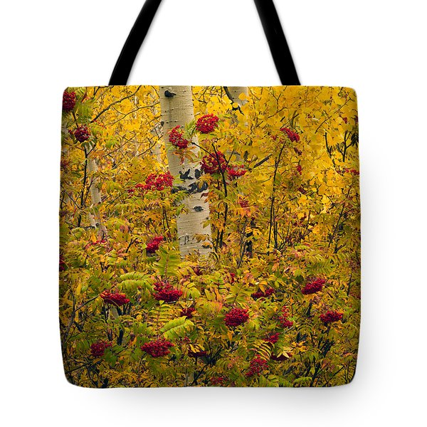 Autumn Forest Colors Tote Bag by Leland D Howard