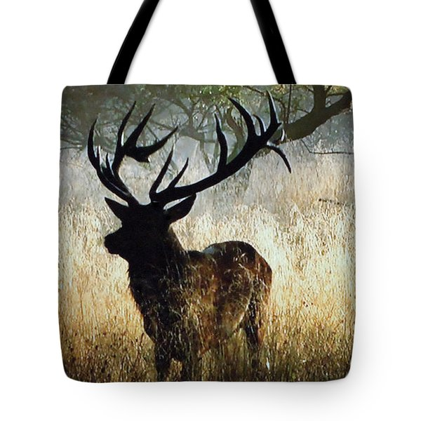 Tote Bag featuring the photograph Autumn Forest Walk In Denmark  by Colette V Hera  Guggenheim