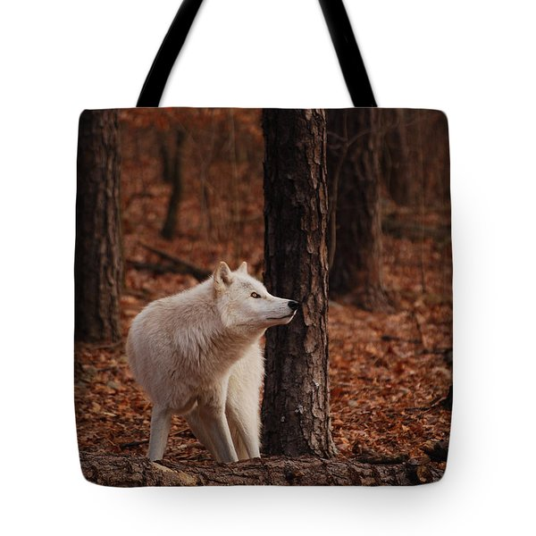 Autumn Gaze Tote Bag