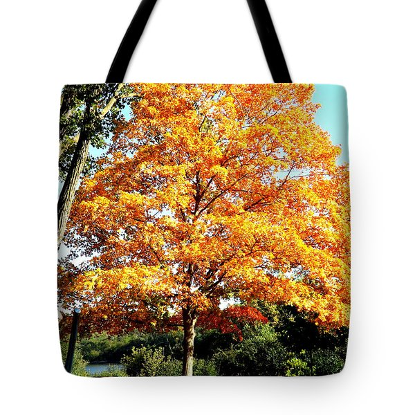 Autumn Glory Tote Bag