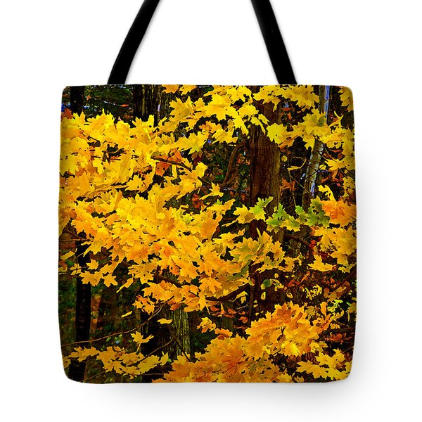 Autumn Glory Dry Brush Tote Bag by Andy Lawless