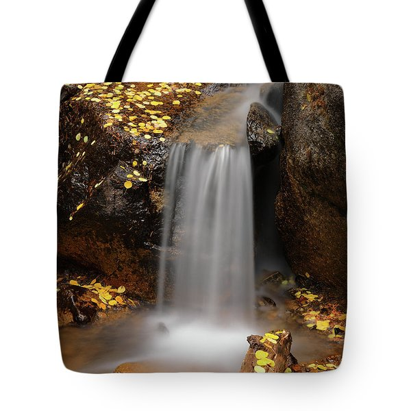 Autumn Gold And Waterfall Tote Bag by Leland D Howard