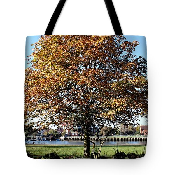Autumn Gold Tote Bag by Terri Waters