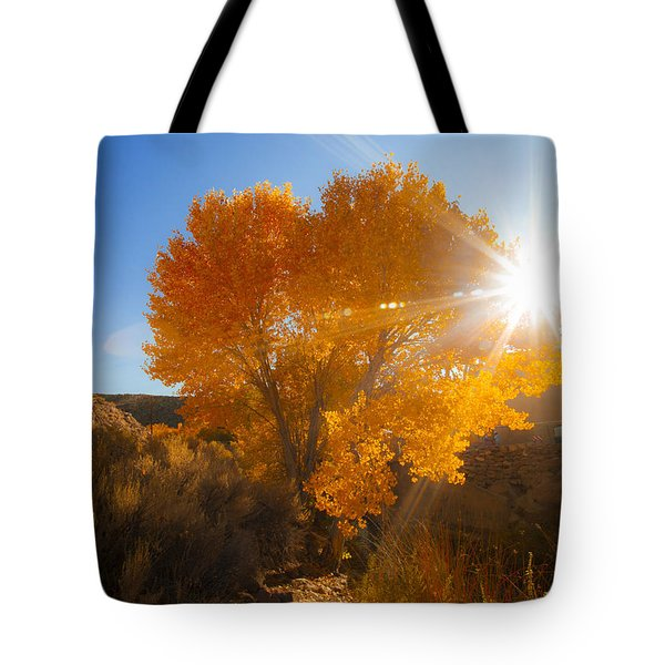 Autumn Golden Birch Tree In The Sun Fine Art Photograph Print Tote Bag by Jerry Cowart