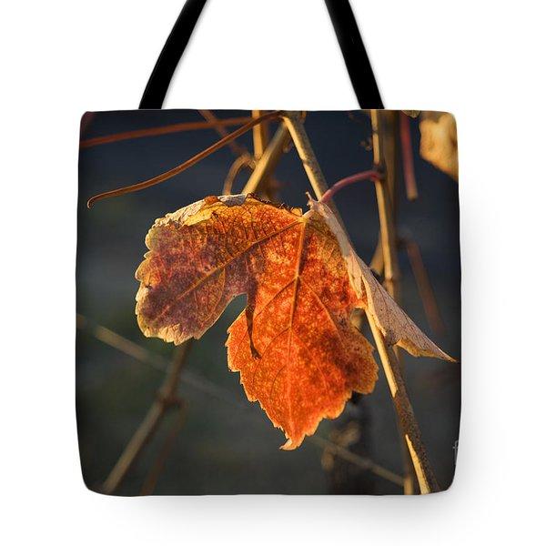 Autumn Grape Leaf Tote Bag