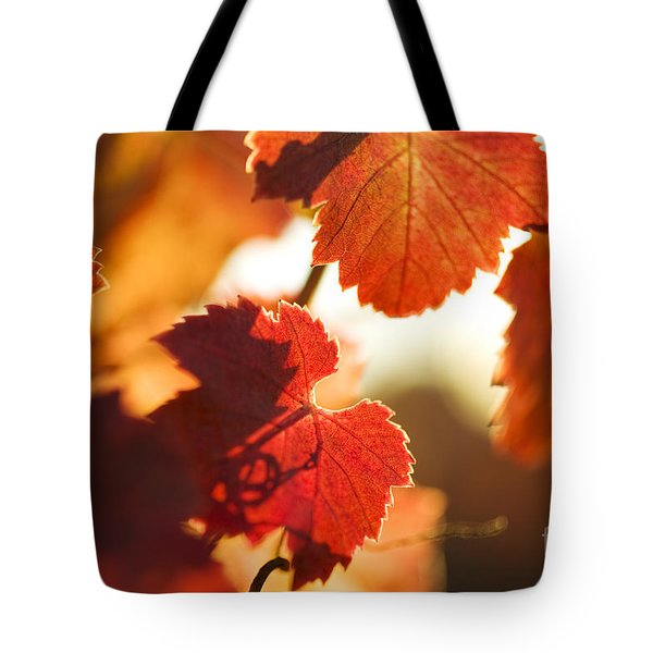 Tote Bag featuring the photograph Autumn Grapevine Leaves by Charmian Vistaunet