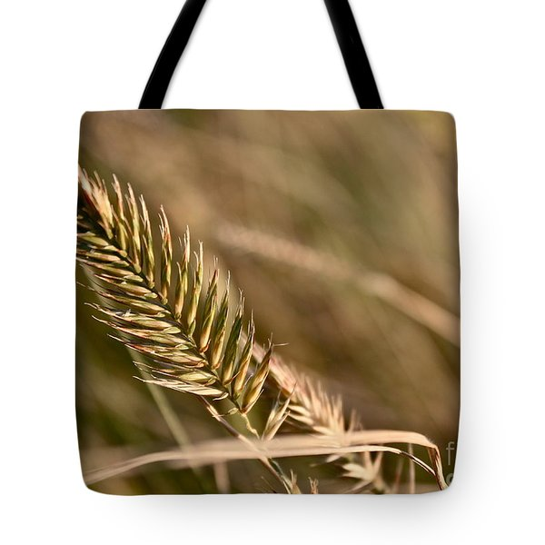 Autumn Grasses Tote Bag by Linda Bianic