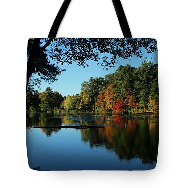 Autumn Grotto Tote Bag by Kenny Glotfelty