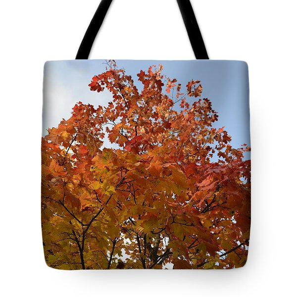 Autumn Harmony 1 Tote Bag
