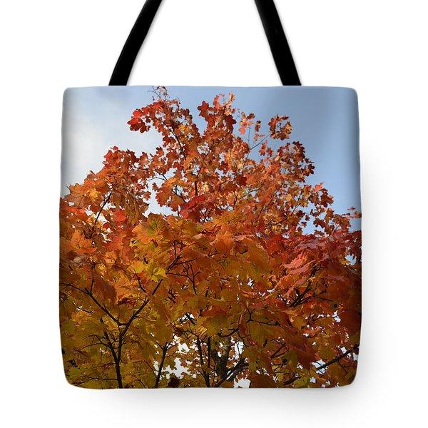 Autumn Harmony 1 Tote Bag