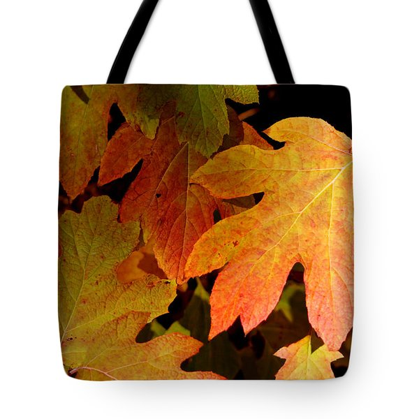 Autumn Hues Tote Bag by Living Color Photography Lorraine Lynch