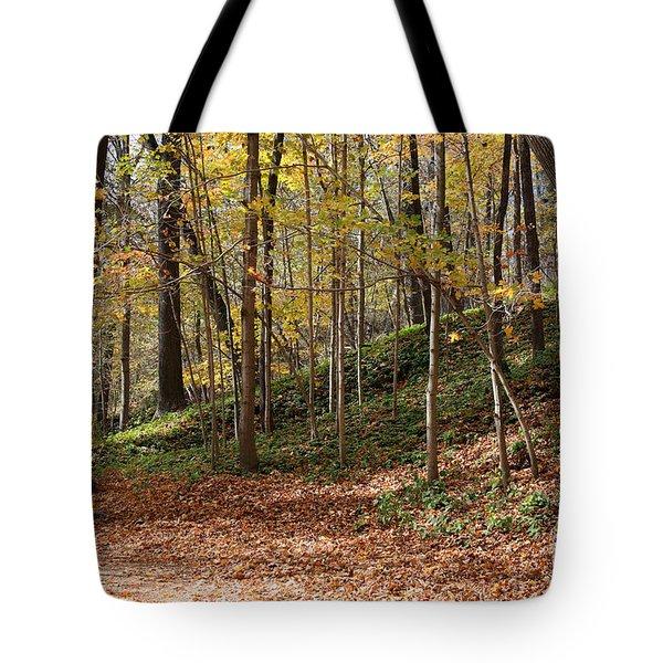 Autumn In Grant Park 4 Tote Bag