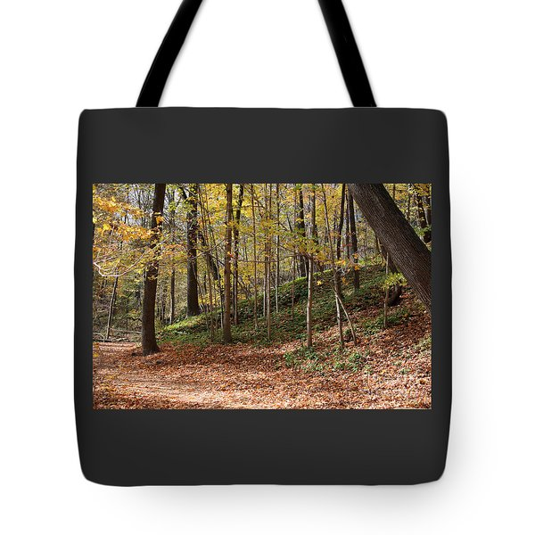 Autumn In Grant Park 4 Tote Bag