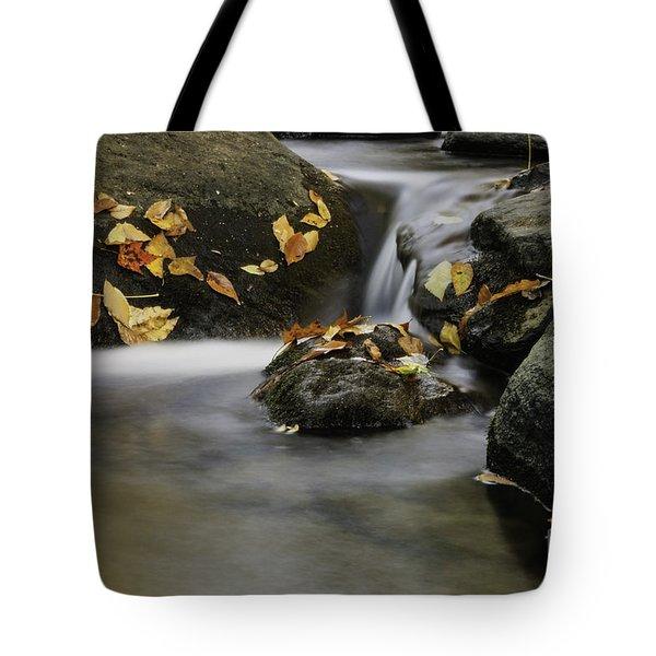 Autumn In Hackelbarney II Tote Bag