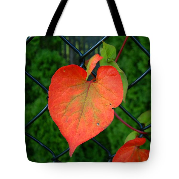 Autumn In July Tote Bag by RC deWinter