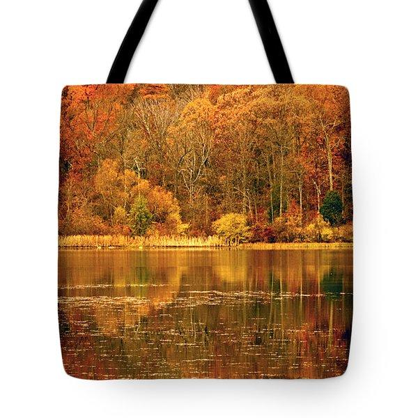Autumn In Mirror Lake Tote Bag