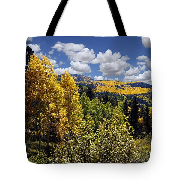 Autumn In New Mexico Tote Bag by Kurt Van Wagner