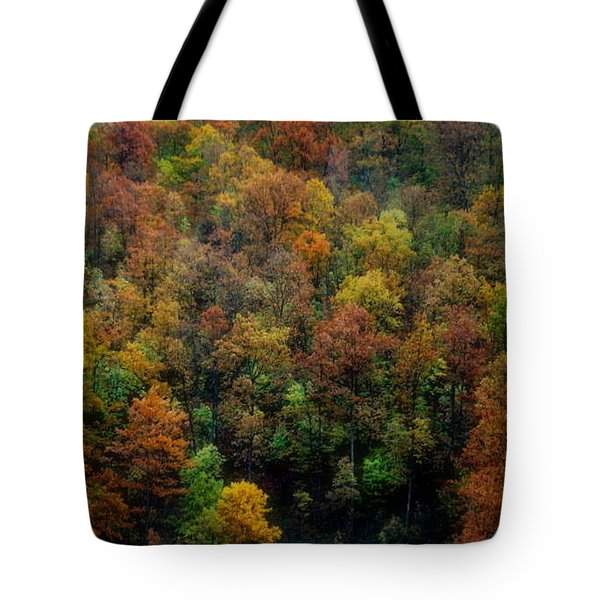 Tote Bag featuring the photograph Colours Of Autumn by Marija Djedovic