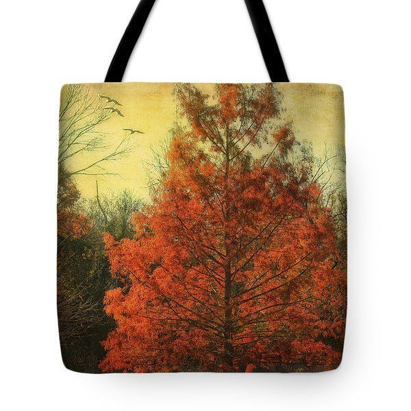 Autumn In Texas Tote Bag by Joan Bertucci