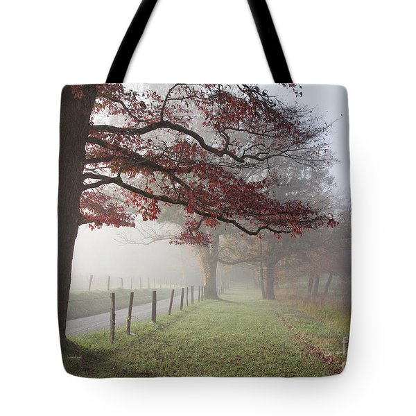 Autumn In The Cove IIi Tote Bag