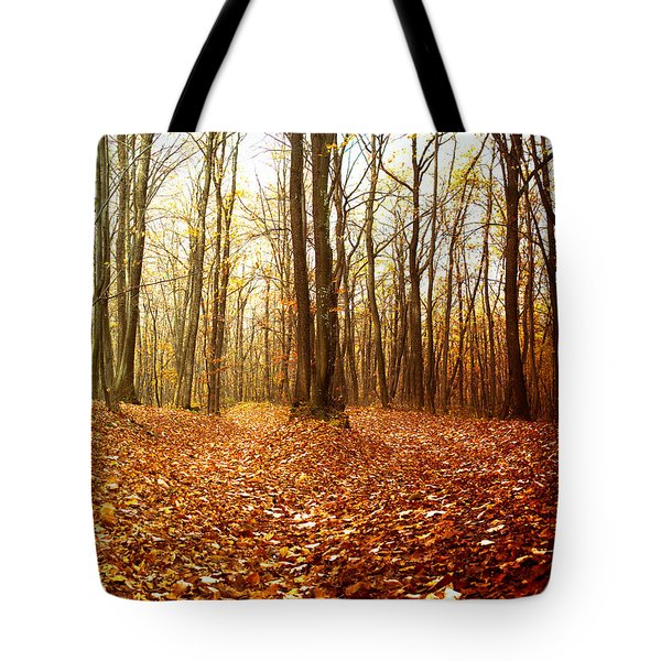 Autumn In The Forest With Red And Yellow Leaves Tote Bag