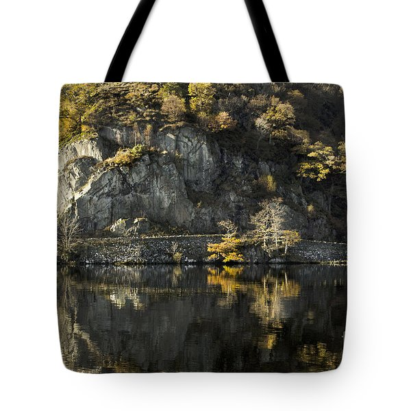 Autumn In The Lake Tote Bag by Linsey Williams