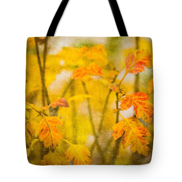 Autumn In Yellow Tote Bag by Alexander Senin