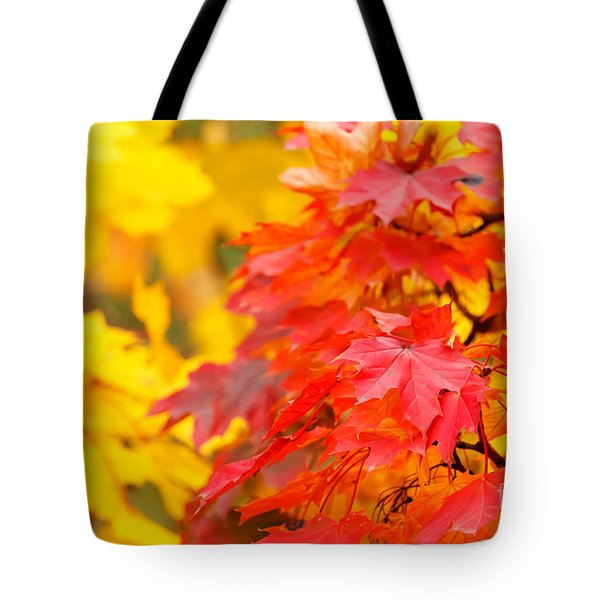 Autumn Is Beautiful Tote Bag