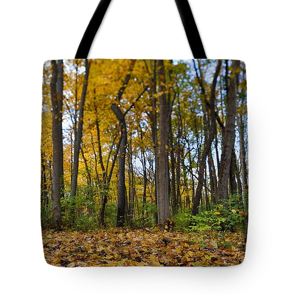 Tote Bag featuring the photograph Autumn Is Here by Sebastian Musial