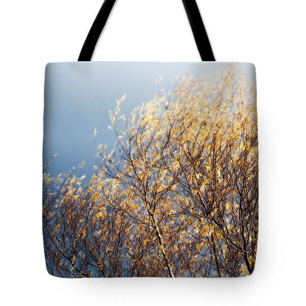 Autumn Is Leaving Tote Bag by Gwyn Newcombe